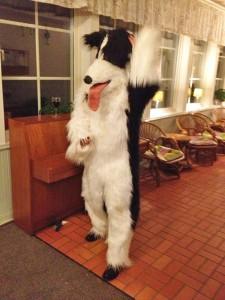 festhund